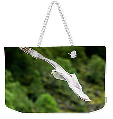 Weekender Tote Bag featuring the photograph Seagull On The Fjord by KG Thienemann