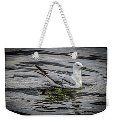 Seagull On The River Weekender Tote Bag by Ray Congrove
