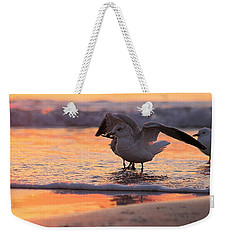 Seagull Stretch At Sunrise Weekender Tote Bag