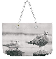 Seagulls  Weekender Tote Bag by Heather Green
