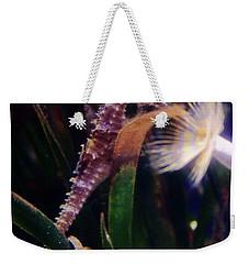 Seahorse Weekender Tote Bag by Ana Mireles
