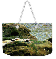 Weekender Tote Bag featuring the photograph Seal On The Rocks by Anthony Jones