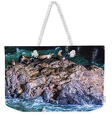 Weekender Tote Bag featuring the photograph Seal  Rock by Jonny D