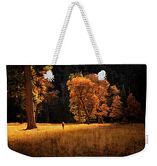 Searching For Light Weekender Tote Bag