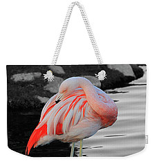 Selective Color Flamingo  Weekender Tote Bag by Shoal Hollingsworth