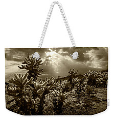 Weekender Tote Bag featuring the photograph Sepia Tone Of Cholla Cactus Garden Bathed In Sunlight by Randall Nyhof