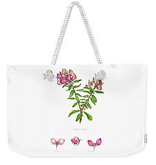 Weekender Tote Bag featuring the painting Septemberbossie  Polygala Myrtifolia by Heidi Kriel
