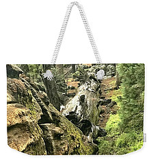 Sequoia Fallen Tree Weekender Tote Bag