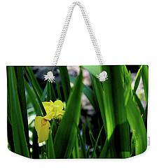 Weekender Tote Bag featuring the photograph Serendipity by Hanne Lore Koehler