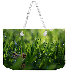 Weekender Tote Bag featuring the photograph Serendipity by Laura Fasulo