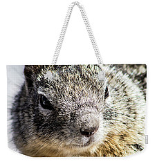 Serious Squirrel Weekender Tote Bag