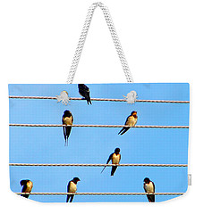 Weekender Tote Bag featuring the photograph Seven Swallows by Ana Maria Edulescu