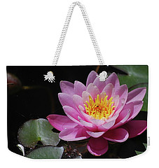 Weekender Tote Bag featuring the photograph Shades Of Pink by Amee Cave