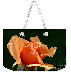 Shades Of The Sun Weekender Tote Bag