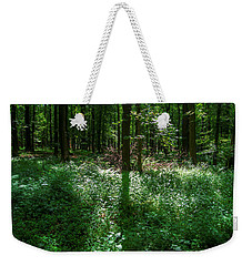 Shadow And Light In A Forest Weekender Tote Bag