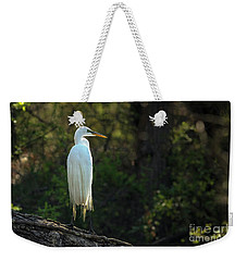 Shadow Heron Weekender Tote Bag