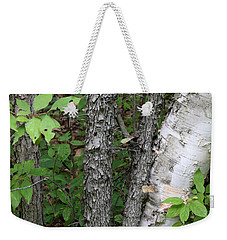 Weekender Tote Bag featuring the photograph Shagbark And Birch by Mary Bedy