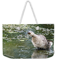 Weekender Tote Bag featuring the photograph Shake It Off by Steven Santamour