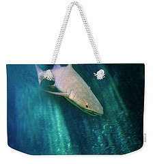 Weekender Tote Bag featuring the photograph Shark And Anchor by Jill Battaglia