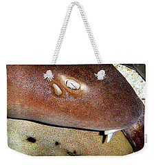 Weekender Tote Bag featuring the photograph Sharks by Anthony Jones