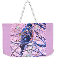 Sharp-shinned Hawk Hunting In The Desert 2 Weekender Tote Bag