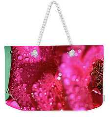 Weekender Tote Bag featuring the photograph Sharp Wet Rose by T Brian Jones