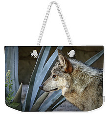 Weekender Tote Bag featuring the photograph She Belongs To The Desert by Elaine Malott