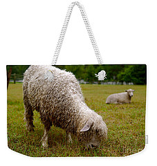 Sheep Begin A New Day Weekender Tote Bag