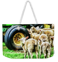 Weekender Tote Bag featuring the photograph Sheep Guards by Toni Hopper
