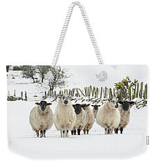 Sheep In Snow Weekender Tote Bag