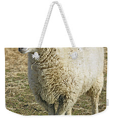 Sheep Weekender Tote Bag by James Larkin