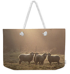 Sheep Underhill Vt Weekender Tote Bag