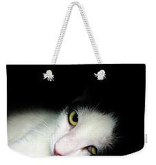 Shelter Cat Weekender Tote Bag