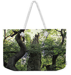 Sherwood Forest Weekender Tote Bag by Martin Newman
