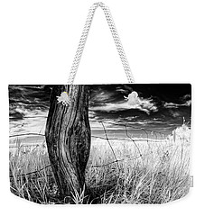 Weekender Tote Bag featuring the photograph She's Got Legs by Dan Jurak