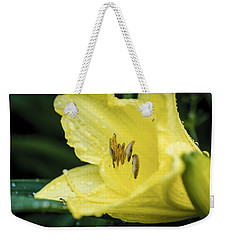 Weekender Tote Bag featuring the photograph Shielded From The Rain by Christi Kraft