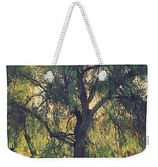 Weekender Tote Bag featuring the photograph Shine Your Light by Laurie Search