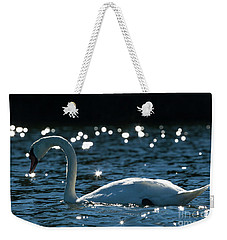 Shining Swan Weekender Tote Bag by Michelle Wiarda
