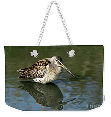 Weekender Tote Bag featuring the photograph Short-billed Dowitcher by Sharon Talson