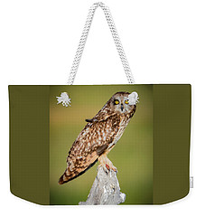 Short Eared Owl Weekender Tote Bag