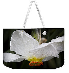 Weekender Tote Bag featuring the photograph Showered Daffodil by Michael Friedman