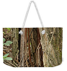 Weekender Tote Bag featuring the photograph Shredded Tree by Carol Lynn Coronios