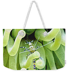 Shrimp And The Anemone Weekender Tote Bag