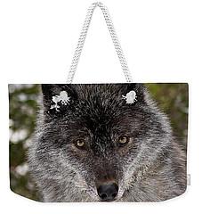 Shy Weekender Tote Bag