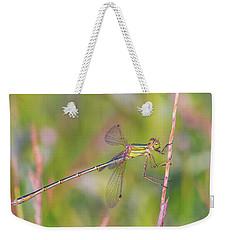 Shy Emerald Damselfly - Lestes Barbarus Weekender Tote Bag