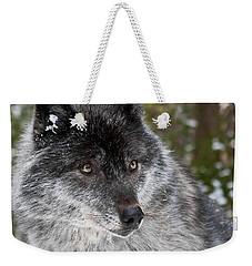 Shy II Weekender Tote Bag