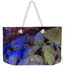 Shy Shrimp  Weekender Tote Bag