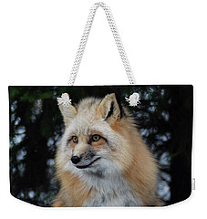 Weekender Tote Bag featuring the photograph Sierra's Profile by Richard Bryce and Family