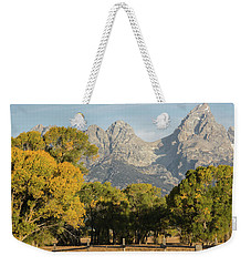 Weekender Tote Bag featuring the photograph Signs Of Autum by Colleen Coccia