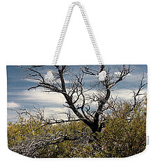 Weekender Tote Bag featuring the photograph Signs Of Life After The Fire by Joe Kozlowski